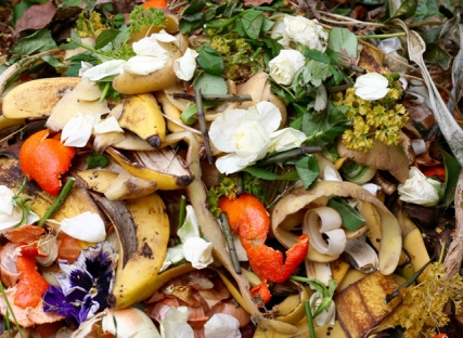 psychological factors of household food waste